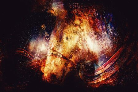 Two horses with ornate harness in close-up view, on abstract structured space background