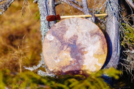 Shamanic drum in nature