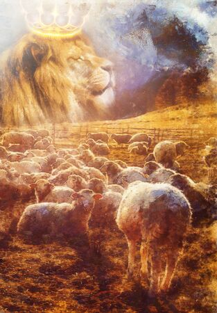 lambs and lion on mountain meadow, Computer painting effect.