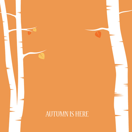 Autumn abstract vector background. Birch trees with foliage. Typical orange, red and brown colors. Eps10 vector illustration. Çizim