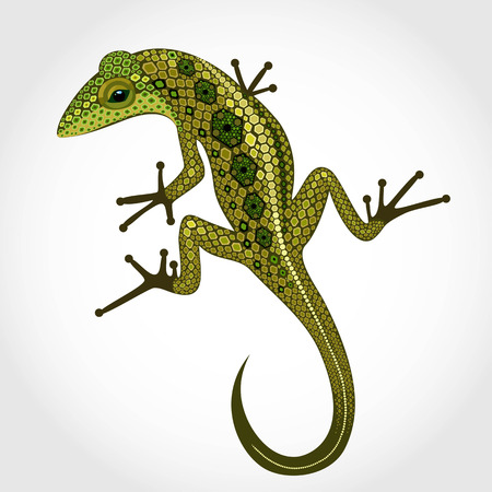 nimble: Lizard isolated on the background volume is covered with scales
