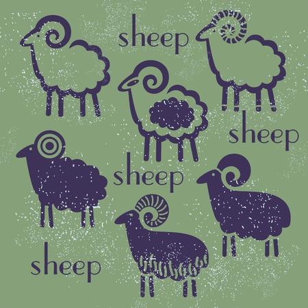 kinky: sheep set against a dark background design new year symbol