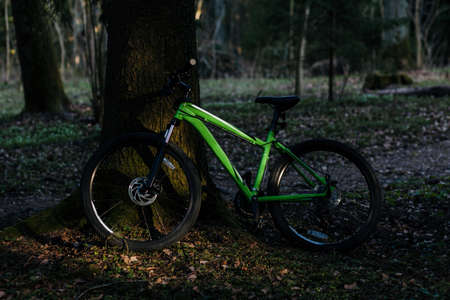 mountainbike with thick offroad tires. bicycle mtb cross country aluminum, cycling sport transport concept in forest Stock fotó