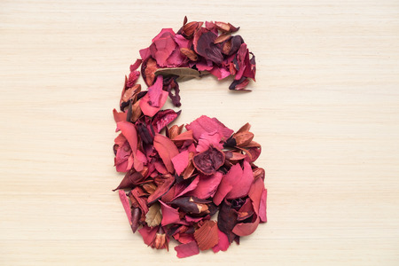 arabic number: Number 6 (six), arabic numeral made from dried red flower on wood background Stock Photo