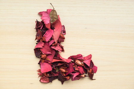 l natural: Alphabet L made from dried red flower on wood background