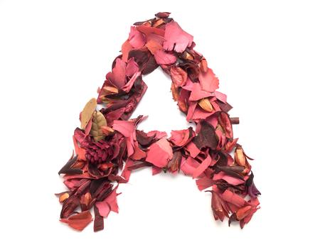 lettre alphabet: isol� lettre A - alphabet capital r�alis�e � partir des p�tales de fleurs rouges secs