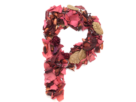 Isolated letter P - capital alphabet made from dry red flower petals Reklamní fotografie