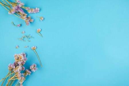 Top view of cute dried violet statice flower on light blue background
