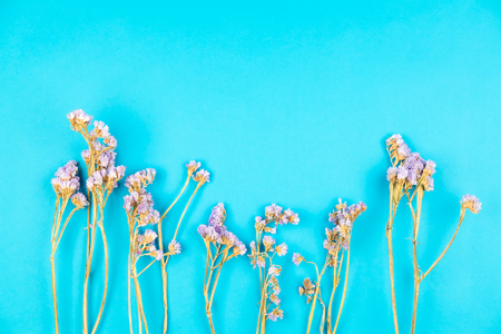 Cute dried violet statice flower on light blue background