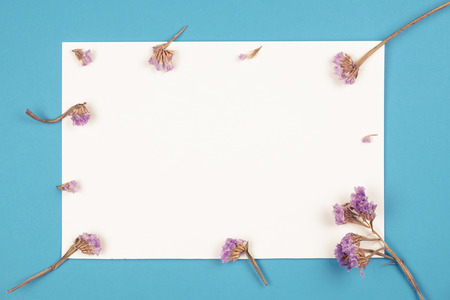 Top view of little cute purple statice flower on white empty paper on blue background in vintage tone Stok Fotoğraf