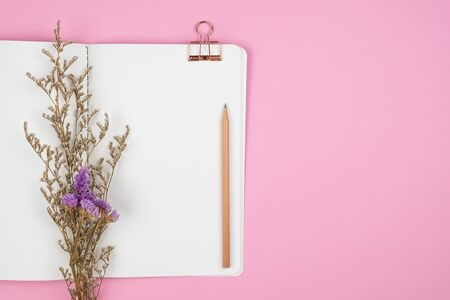 Top view of dot grid notebook with pencil, paper clip and white caspia flower bouquet on pastel pink background
