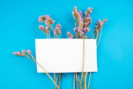 Cute dried violet statice flower with white paper card on top on blue background