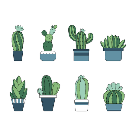 Cute hand drawn cactus plant in the pots - Vector Illustration Çizim