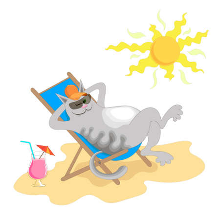 happy cat basking in the sun on a sandy beach in a sun lounger