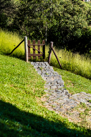 Downhill rocky pathway leading to wooden gate, forest in background. grass sorroundings. Golden sunlight side lighting