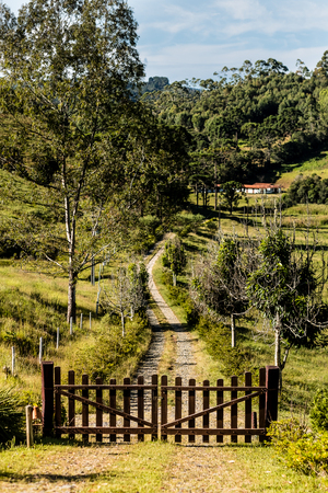 Downhill rocky pathway leading to wooden gate, forest in background. grass sorroundings. Noon sun Stock Photo