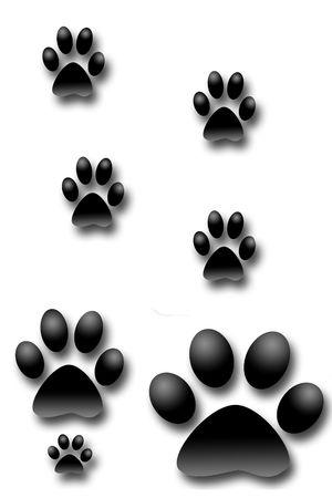 dog footprints illustration Stock Photo