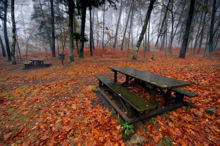 nice and cold autumn landscape Stock Photo