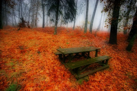 nice and cold autumn landscape Stock Photo - 3983018
