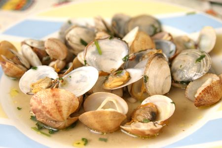 beautiful and tasty clams, food photo