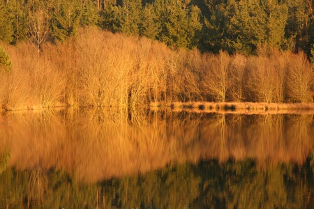 beautiful autumn landscape with river and reflex, Portugal photo