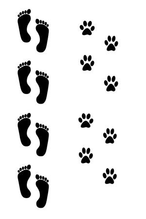 huellas de perro: perro y huellas humanas sobre fondo blanco