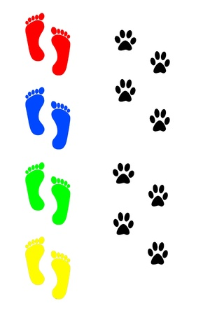cat scan: dog and human footprints over white background