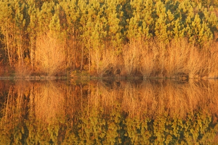 beautiful autumn landscape with river and reflex, Portugal