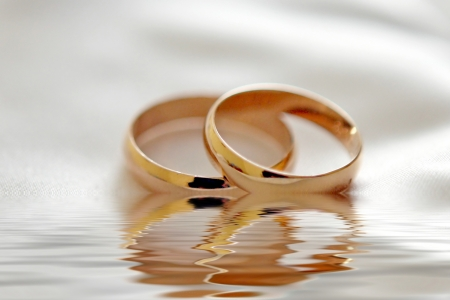 wedding bands: Two wedding rings with white flower in the background, wedding photo Stock Photo