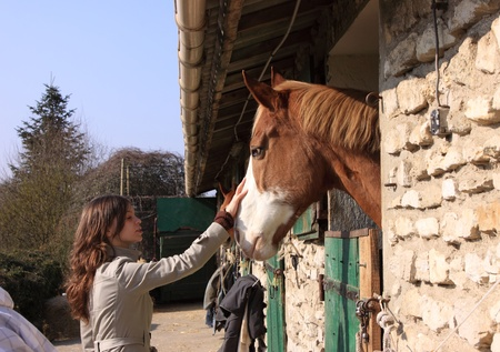 pretty young woman giving food to horses photo