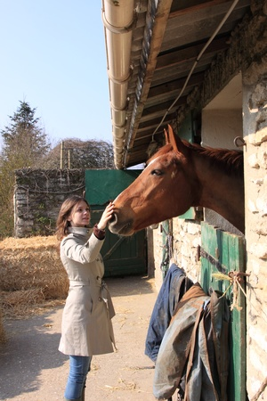 pretty young woman giving food to horses Stock Photo - 9302454