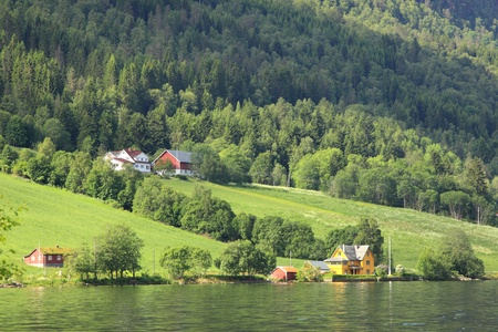 Wonderful fjord greens of norvege in spring
