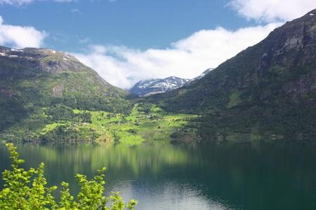 Wonderful fjord greens of norvege in spring photo