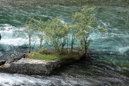 torrent with a strong current in the spring in norway Stock Photo - 10114677