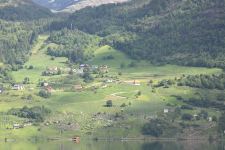 Wonderful fjord greens of norvege in spring Stock Photo - 10301172