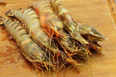 big fresh tiger prawns, king prawns, shrimp photo