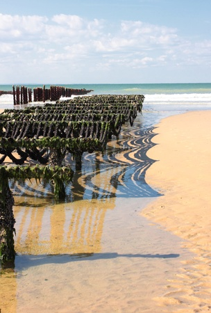 mussel farming on the coast of opal in the north of France Stock Photo - 11017115