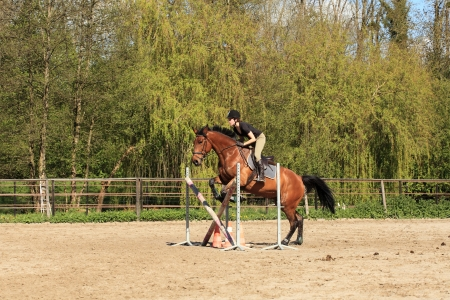 Young woman with a brown horse jump an obstacle photo