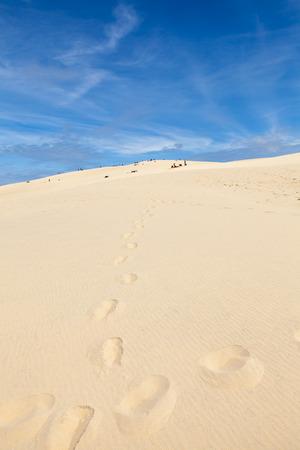 sand dune: Dune of Pilat