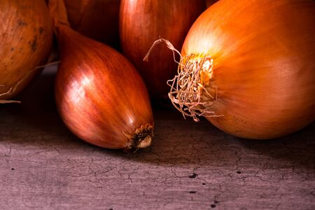 onions and shallots with a nice light for a kitchen decoration poster