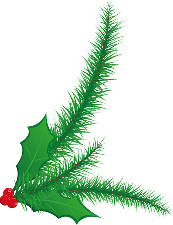 Christmas Holly Berries and Pine Needles Illustration