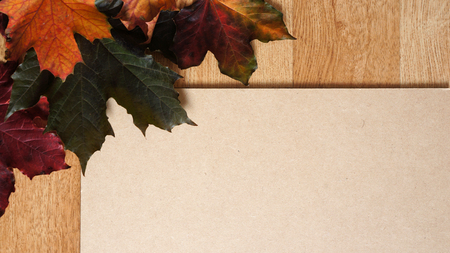 Autumn Fall Leaves on a Wooden Grain Flooring Background