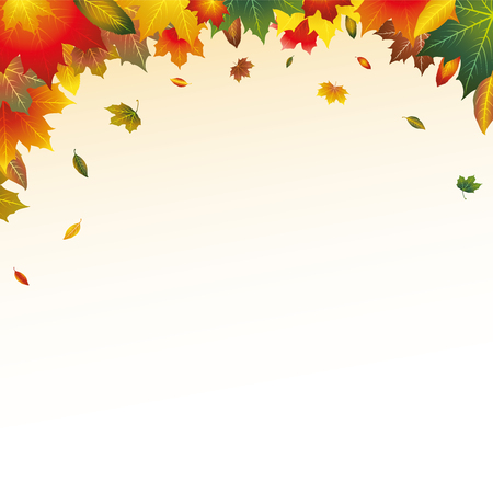 Vector Red, Orange, Brown, Green and Yellow Autumn Leaves Top Page Border Frame Background 일러스트