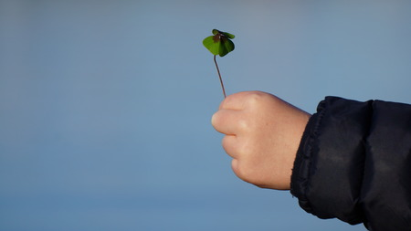 Child's hand holding a Four Leaf Clover against a Blue Sky 스톡 콘텐츠