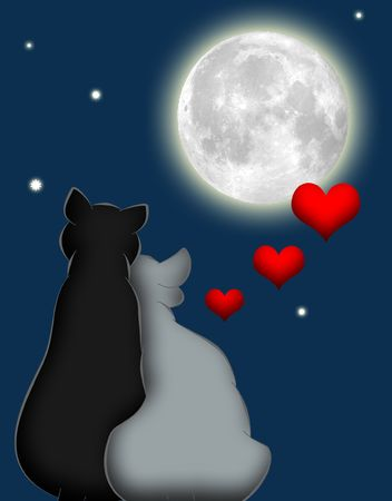 Cartoon cats in love under the moon and stars
