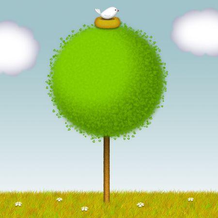 Round tree with white bird nesting on it. photo