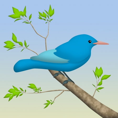 perched: Blue bird perched on a tree branch.