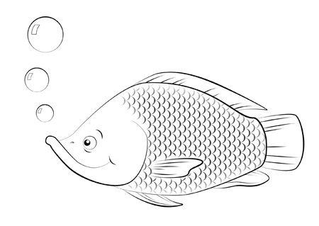 Line drawing of swimming Saint Peters fish. Фото со стока