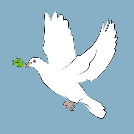 palomas volando: Ilustración de una paloma blanca con la rama de olivo.