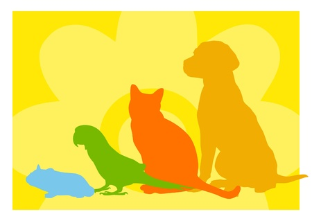 Dog, cat, parrot and hamster silhouettes with space for text. Stock Photo